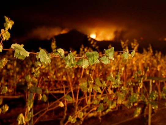 A wildfire from a distant mountain burns over a vineyard