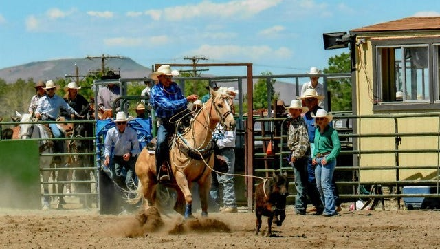 Yerington High senior Denton Williams will compete at the National High School Finals Rodeo in Wyoming.