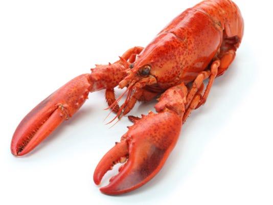 635978873285916079-lobster1.jpg