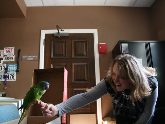 Jennifer Smith visits with the parrot, found outside the courthouse Wednesday morning.