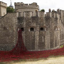 """Ceramic poppies appear to spill from a window into the dry moat at the Tower of London in an installation by artist Paul Cummins titled """"Blood Swept Lands and Seas of Red. Matt Dunham / ApA group of people pose for a selfie backdropped by the ceramic poppy art installation by artist Paul Cummins entitled 'Blood Swept Lands and Seas of Red' after its official unveiling in the dry moat of the Tower of London in London, Tuesday, Aug. 5, 2014.  Status:Published"""