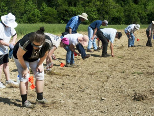 Nancy Godfrey, front, of York Township, begins with a row of other volunteers making a systematic walk across the latest dig site in search of Camp Security on Monday. Today and Wednesday the volunteers will use metal detectors, which last August helped volunteers to find two coins   a British half-penny and a Spanish coin   as well as a musket ball and buttons.