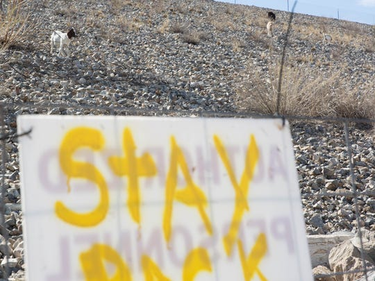 A fence sign warns passers-by to stay away from the goats tasked with eating weeds on the side of the Las Cruces Dam, Thursday, May 25, 2017.