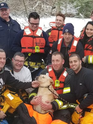 Members of Lindenwold Fire Department pose with Buddy, a dog rescued Saturday from ice-covered Laurel Lake.