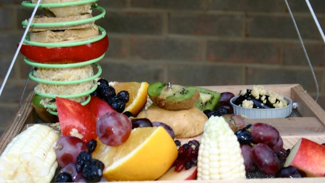 Homemade suet dough in a green spiral holder is offered with corn, fresh fruits, nuts, jelly and a dog biscuit on a hanging platform bird feeder.