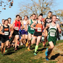 PIAA Cross Country results, Nov. 5