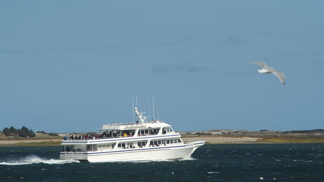 The Hyannis Whale Watcher Cruises boat heads past Sandy Neck on its way out of the harbor for its 11 a.m. whale watching tour Sunday.