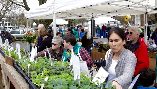 People thumb through herbs  at Minto Island Growers' stand at the Salem Saturday Market on Saturday, April 1, 2017.