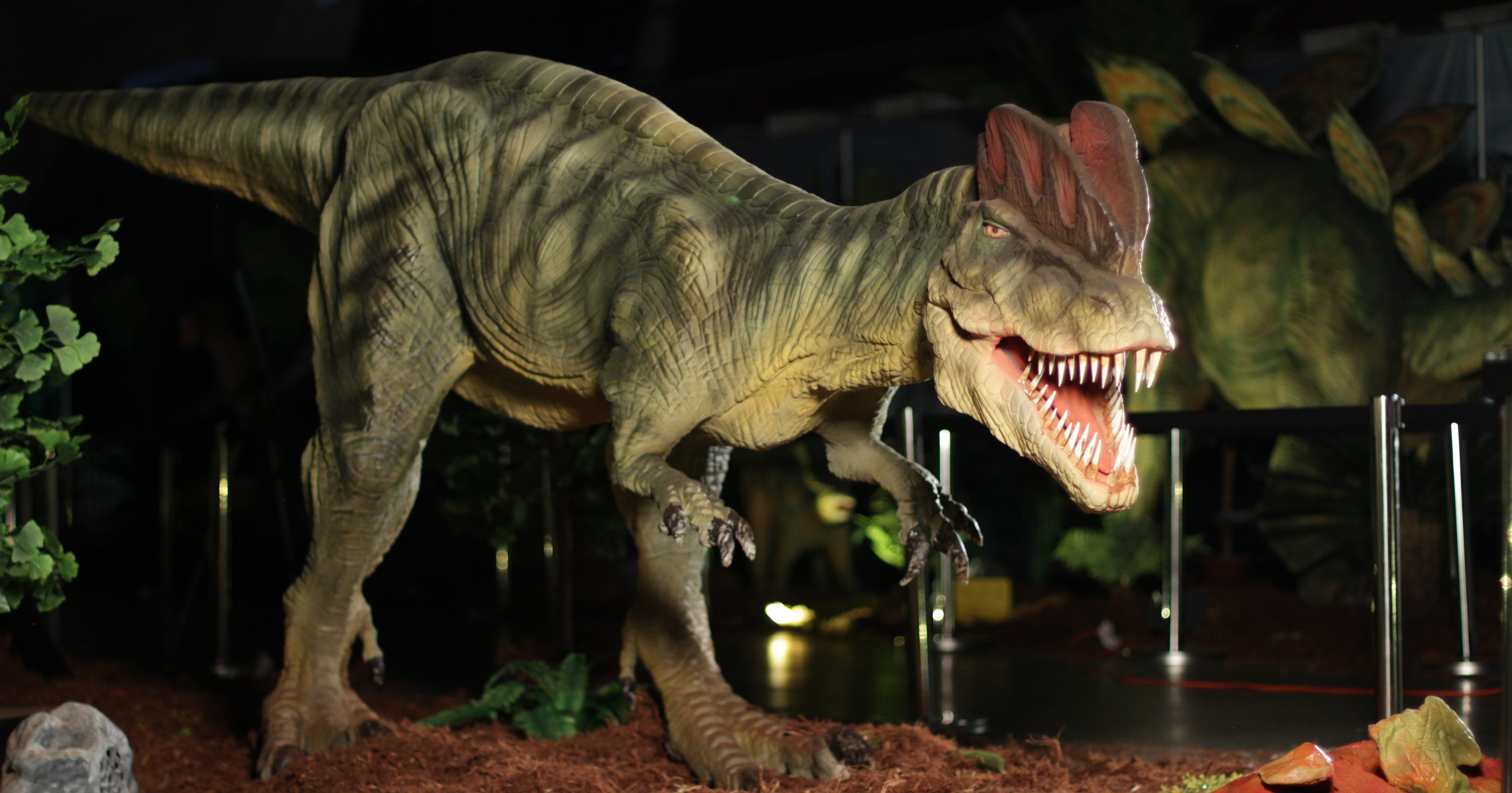 Family things to do in Reno: Jurassic Quest, Paw Patrol Live!