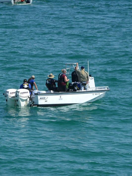 dolphin rescue.JPG