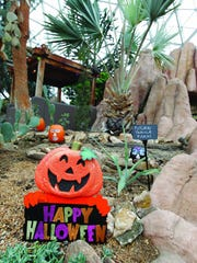 The Desert Dome will take on a Dia de Los Muertos look Friday at the Mitchell Park Domes.