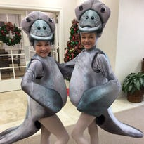 Ballet Vero Beach makes final preparations for 'Nutcracker on the Indian River' premiere