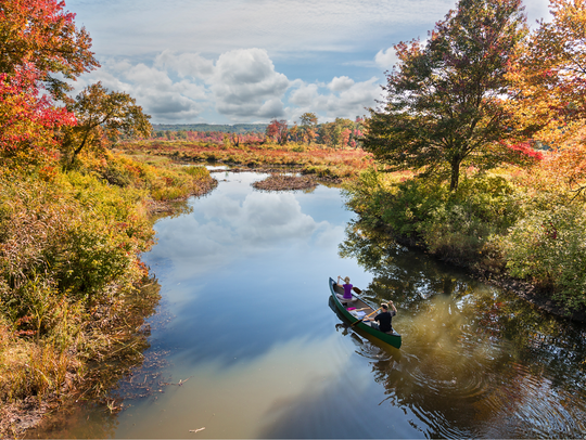 Visitors and locals paddle among fall trees along Connecticut