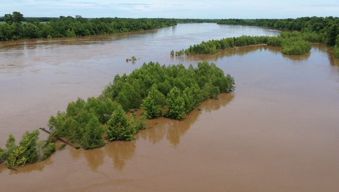 The Red River at Boyce already has overtaken some trees.