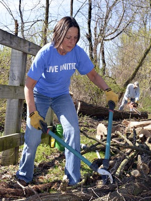 Wearing her 'Live United' T-shirt, Jane Miller breaks up the larger tree limbs from a felled tree on the Lebanon Valley Rail Trail near Cornwall during the 2015 United Way of Lebanon County Day of Caring. A member of the Lebanon Ski Club, Miller and the other members chose the cleanup project. Sawing the tree in the background is Todd Dissinger.