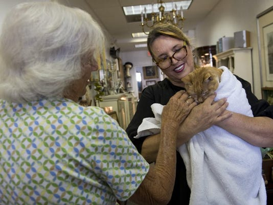 25-year-old homeless cat gets adopted