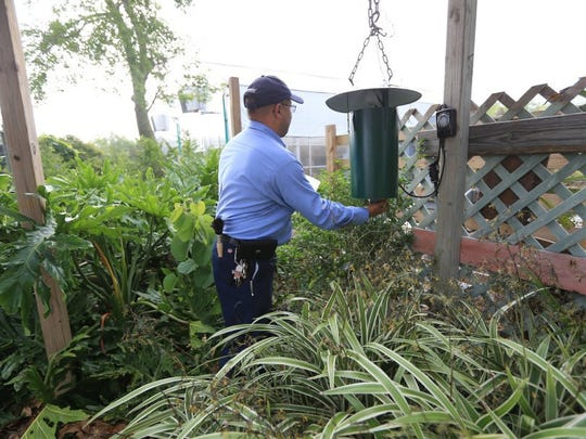 Tony Pantoja, a vector control officer, collects samples