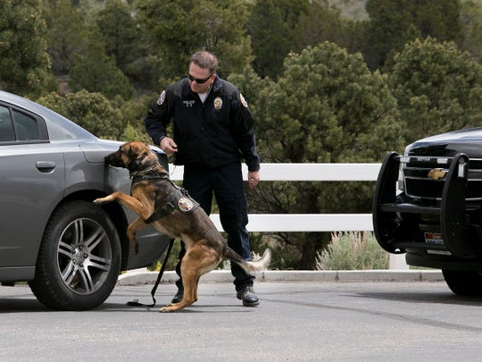 The Friends of Iron County Police K-9 fundraiser was held on Diamond Z Ranch on Saturday. K-9 handlers showcased the skill and agility of the highly trained dogs in a series of simulated scenarios.
