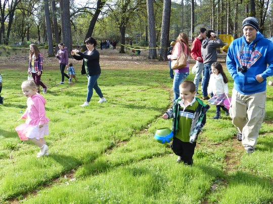 Children and their parents scramble across a yard looking for Easter eggs full of candy at Lakehead's Canyon Elementary School on Saturday.