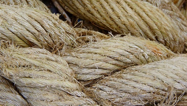 Hemp: not just for rope and necklaces.