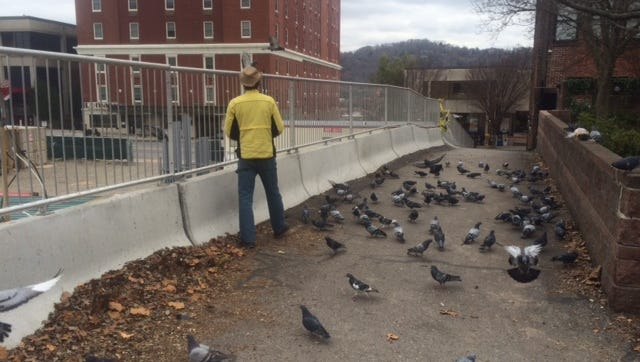 The pigeon man often feeds the birds in an alley off Haywood Street downtown.