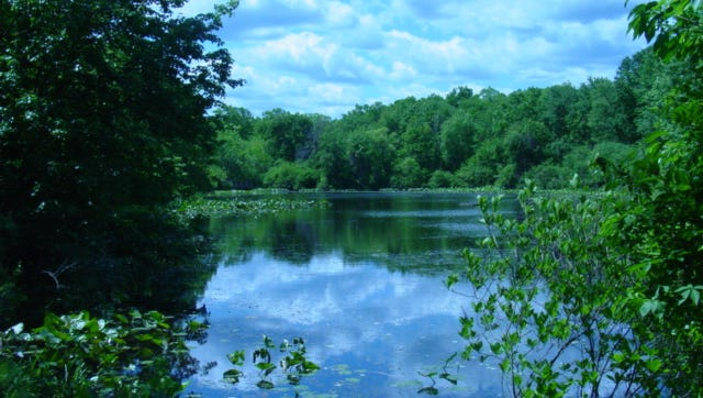 Great Swamp Outdoor Education Center