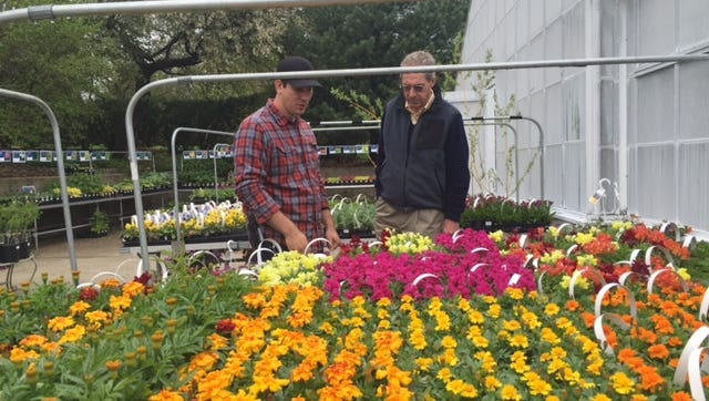 Doug Schuster, greenhouse manager, at left, and Chuck Gleaves, executive director of Kingwood Center Gardens, show some of the flowers and plants for sale on Saturday.