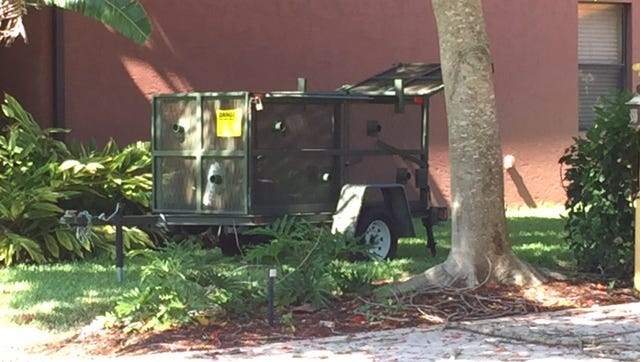 Officials with the Florida Fish and Wildlife Conservation Commission set a trap for a juvenile black bear on Monday on Vesper Drive near McGregor Boulevard in Fort Myers.