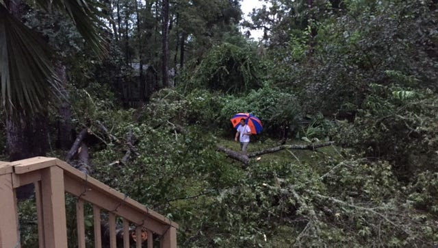 The Autry family's yard on Woodgate Way after Hurricane Hermine.