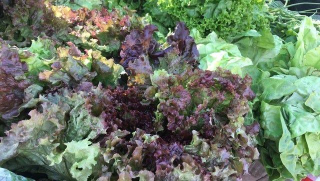 Youthful salad days of the Farmington farmers market.