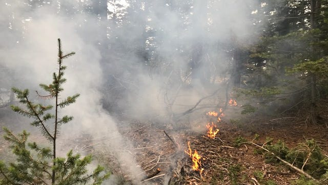 The actual size of the Pepper Springs Fire is 74 acres, up from the previously estimated 51 acres. The fire is located south of Forest Road 437, with two acres having burned east of Forest Road 434.