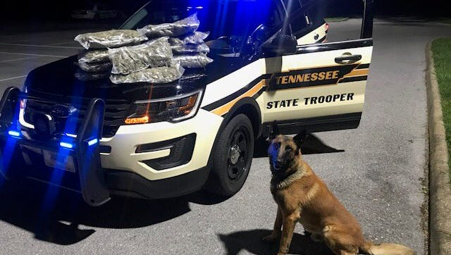 The Tennessee Highway Patrol seized approximately 10 pounds of marijuana during a traffic stop along Interstate 40 in Knox County on Tuesday night, Aug. 14, 2018.