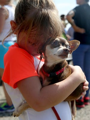Adam Sauceda/Standard-Times Kayleigh Farish, 5, holds a dog named Shelly during Saturday's Hike with a Homeless Dog at San Angelo State Park.