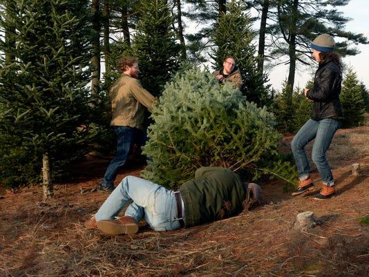 Christmas tree farms.jpg