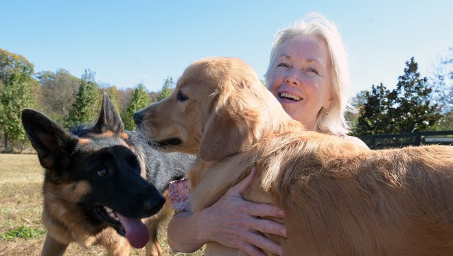 Dr. Margaret Phillips pets her dogs, Madeline and Duncan, at the Clovercroft Veterinary Hospital's dog park in Franklin on Nov. 9, 2016.  The Franklin veterinarian is trying to raise funds for a dialysis machine for dogs to be used by doctors around the region.