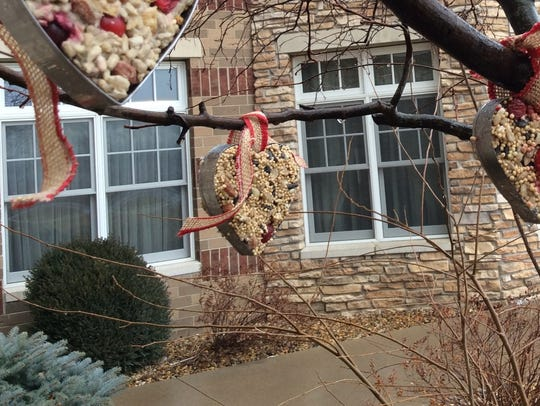 These homemade bird feeders are easy to make.