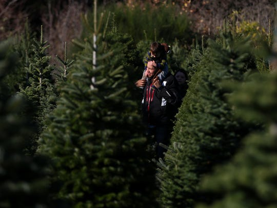 Elijah Mata catches a ride on the shoulders of I.B. Mata, Sunday, November 29, 2015, at Palmer's Tree Farm in Salem, Ore.