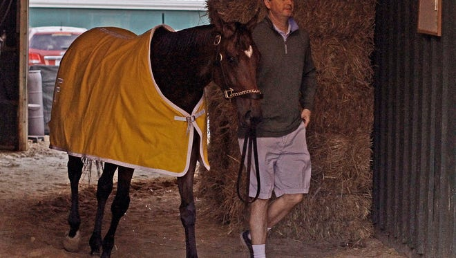 Trainer Al Stall, Jr., walks his Preakness Stakes entrant Departing after a morning gallop at Pimlico Race Course Saturday, May 18, 2013 in Baltimore.
