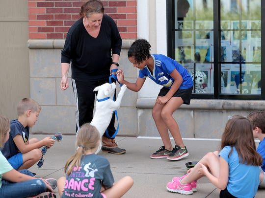 Day camper Maddison Iglesias learns a little about puppy training from Amy Lear during the one-day kid's camp at the pet adoption center in Carriage Crossing hosted by Collierville Animal Services. Participants at the annual camp learn about owning pets, make animal crafts and get to play with puppies and kittens.