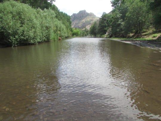The Gila River flows near Turkey Creek.