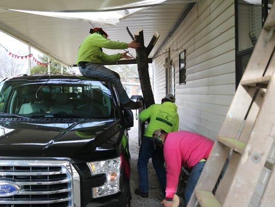 3_tree on truck