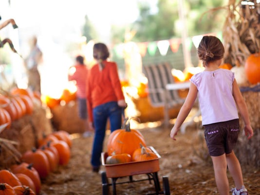 Cute Little Girls Pulling Their Pumpkins In A Wagon