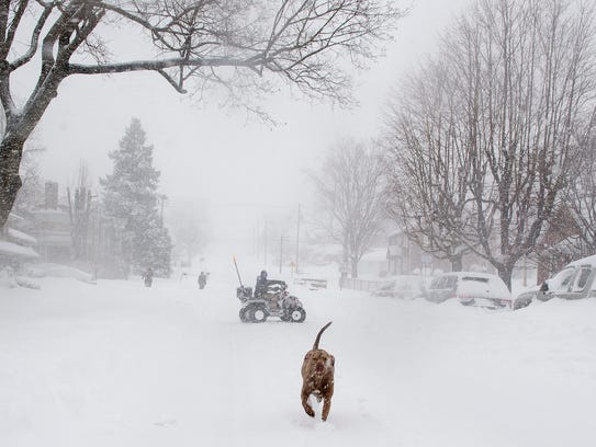 Tyson the dog runs outside into the snow as his owners