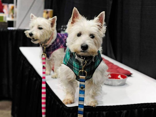 Pet costume contests alone make this event worth attending!