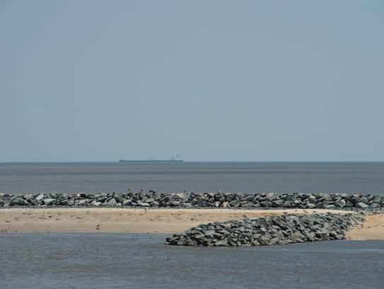 View of the newly restored beach habitat for horseshoe