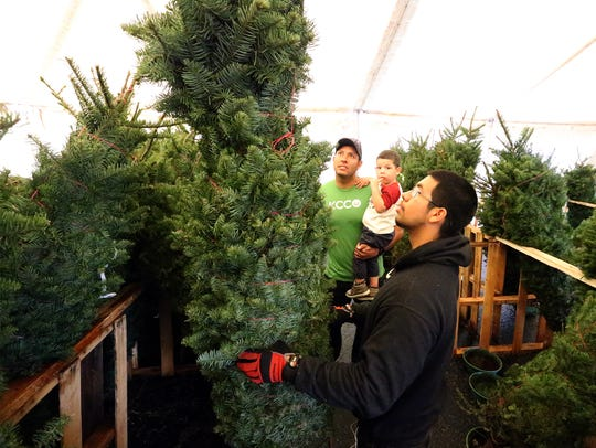 Benjamin Avalos and his son Benji Avalos, 2, of El Paso look at Christmas Trees with salesman Enrique Saenz at the B & T tree lot at 1120 McRae Boulevard recently.