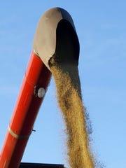 Farmers interested in growing industrial hemp should
