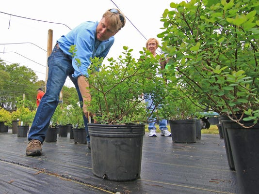 South Carolina Botanical Garden annual Spring plant sale The South Carolina Botanical Garden Spring Plant Sales will be held on Friday, April 10 from 2-6 pm (open to Friends of the Garden, memberships available at gate), and Saturdays, April 11 and May 2,