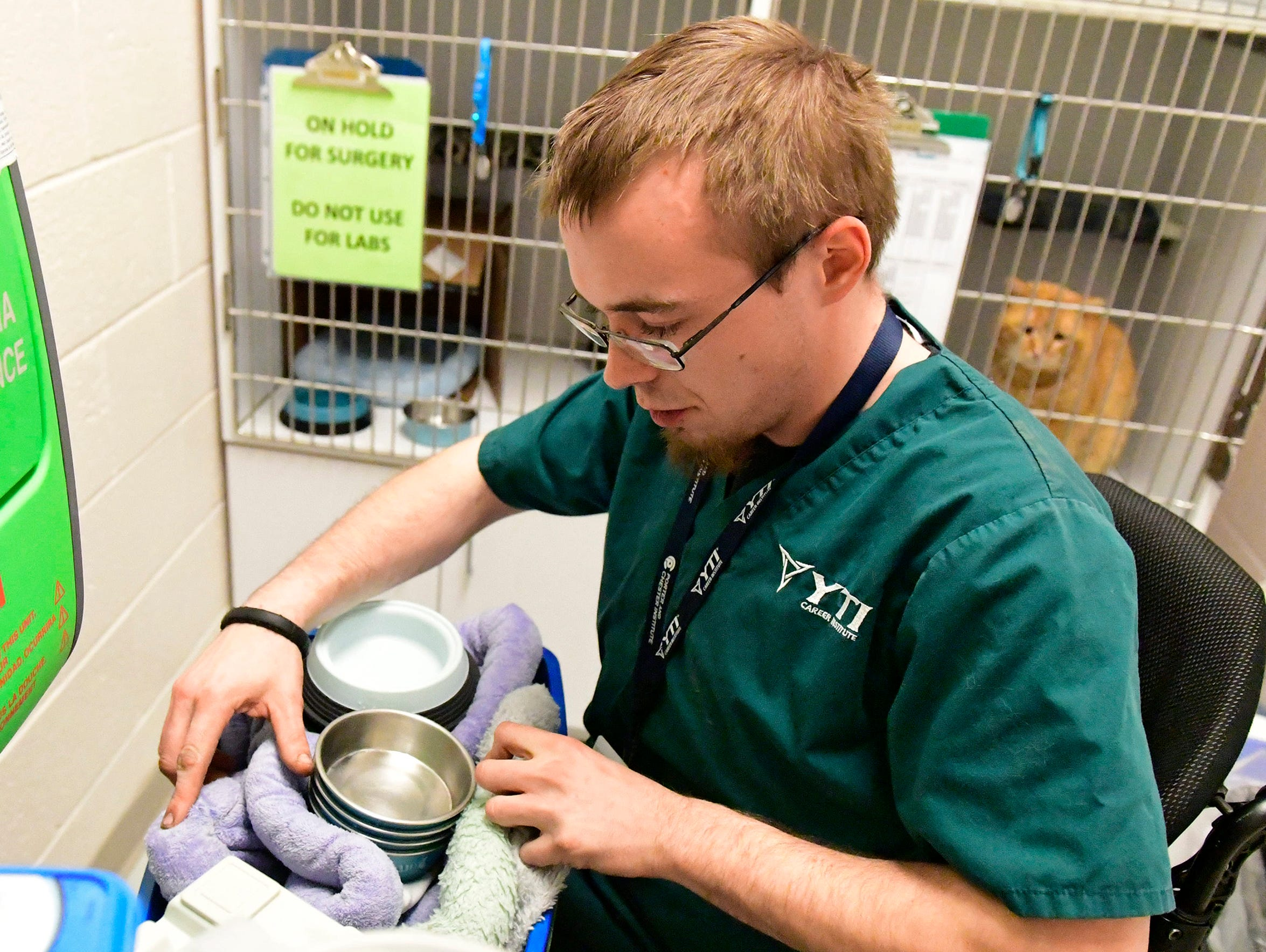 Frahn works with a group of cats as part of YTI Career