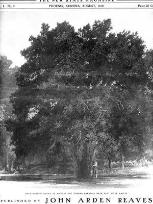 A towering juniper, 21 feet in circumference, was the centerpiece of the Pineair Resort. It was featured on the cover of the August 1910 issue of Arizona-The New State Magazine.
